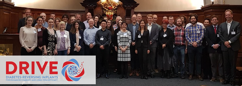 DRIVE Expert Advisory Board and General Assembly meeting held in RCSI Dublin