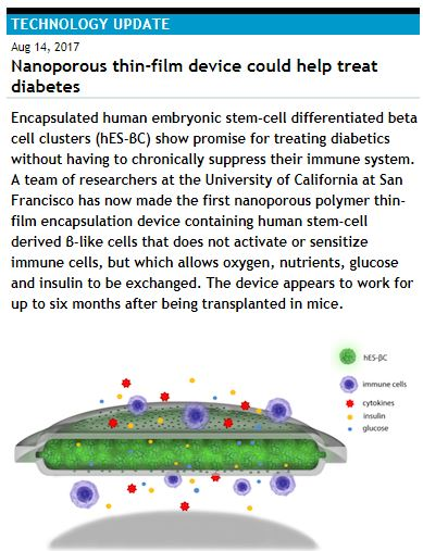 Nanoporous thin-film device could help treat diabetes
