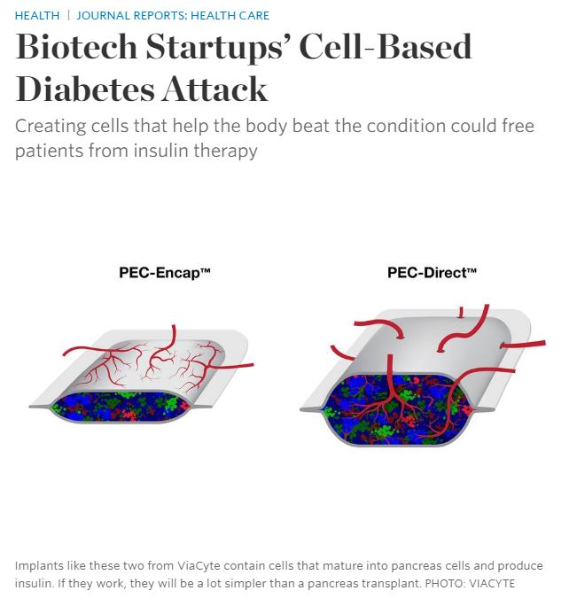 Biotech Startups' Cell-Based Diabetes Attack
